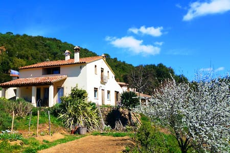 Beautiful old farmhouse with pool II  (PG-502) - Sant Mateu de Montnegre - Σπίτι