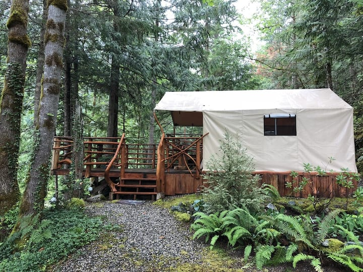 Rainforest Deluxe Tent
