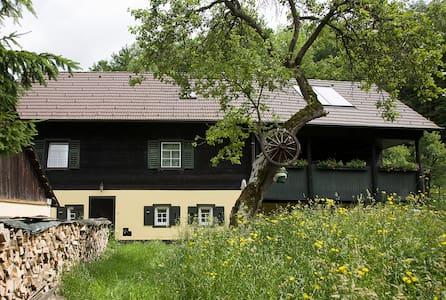 Wienerwald-Landhaus Wolfsgraben/Pressbaum - Pressbaum - Daire