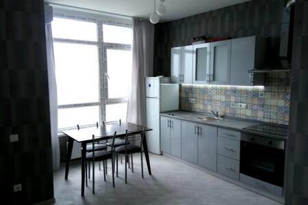 Studio apartment near Demeevska metro station