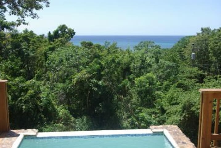 Private, Ocean View/Access, pool - West Bay Roatan - House