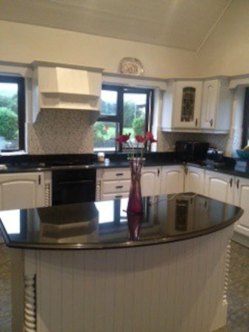 Fully equipped kitchen with electric hob and oven and microwave