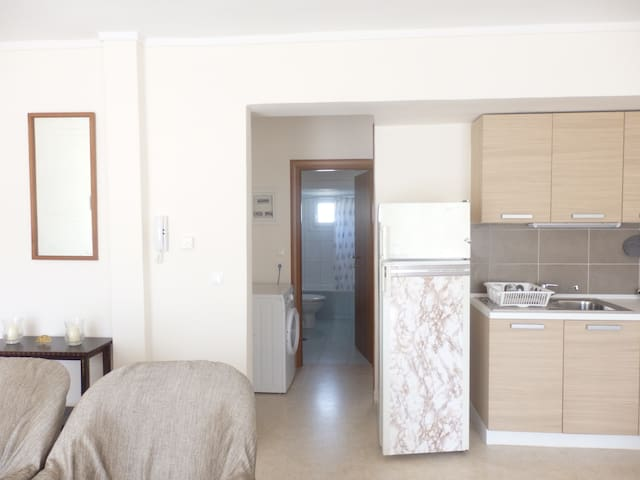 SPACIOUS AND CONVENIENT FLAT BY THE SEA  -  1