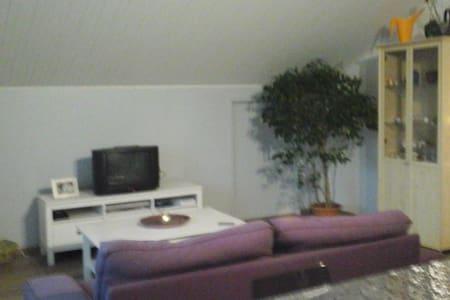 Chambre dans appartement calme dans une maison - La Ravoire