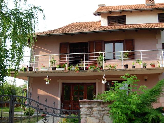 Apartmants in Sokobanja - Sokobanja - Apartment