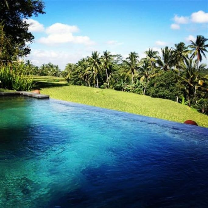 Luxury & privacy amidst nature 01