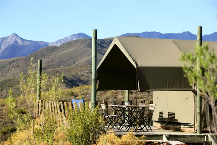 Le Petit Karoo Ranch - Luxury bushtent 1