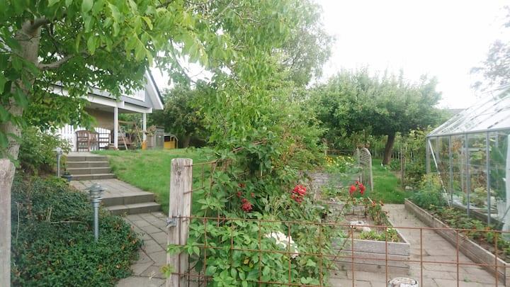 Hyggelige værelser med adgang til have (VÆRELSE 2)
