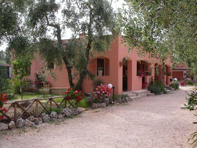 Casa vacanza a Vieste sul Gargano - Vieste - Lejlighed