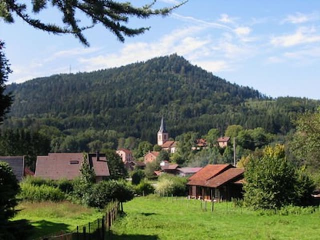 Old farm renovated in Vosges forest - Le Saulcy - Haus