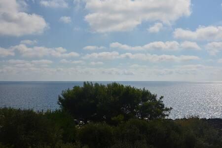 Villa con giardino, sul mare - Marina di Marittima - Villa