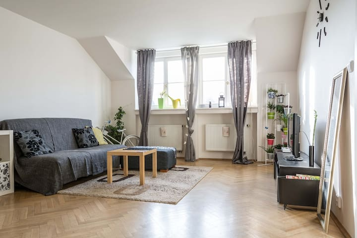Fantastic apt. right in the City Center - Praha - Huoneisto