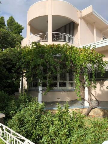 Quiet & Leafy on Linden