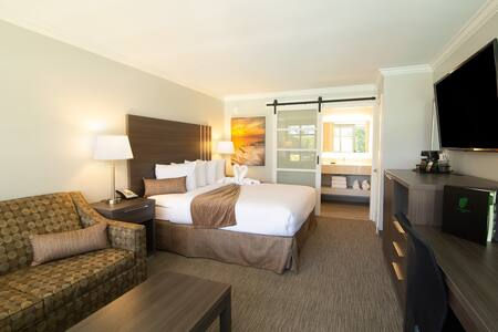 Palm Garden Hotel, Standard King