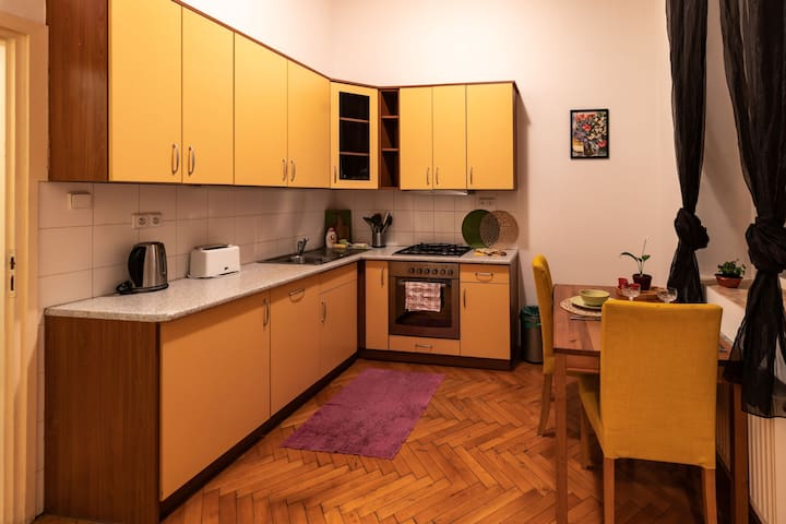 Centrical flat in a historical house close to park