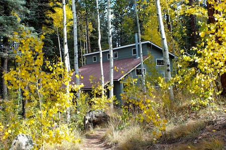 THE ALPACA BARNHAUS in Jemez Mtns @ 8700'