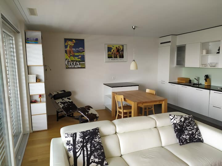 Splendid / ready furnished 2 room ap. in Lausanne