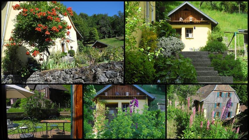 Au coeur du Vallon le temps y est parfois suspendu - Murbach - Allotjament sostenible a la natura