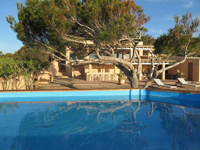 beautiful villa with pool - Sant Ferran de Ses Roques - Villa