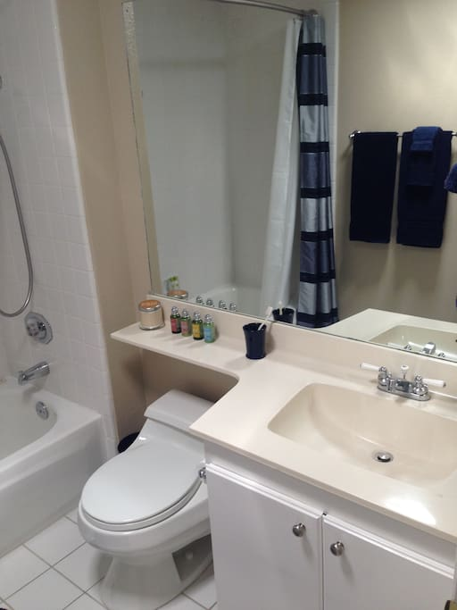 Occasionally SHARED bathroom with bathtub/shower