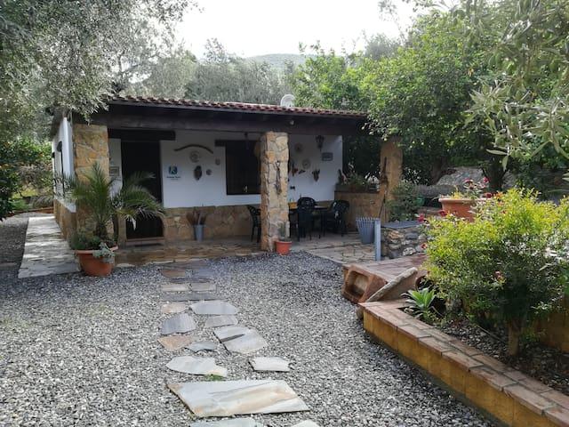"""Casa Rural """"Cortijo Los Chinos"""""""