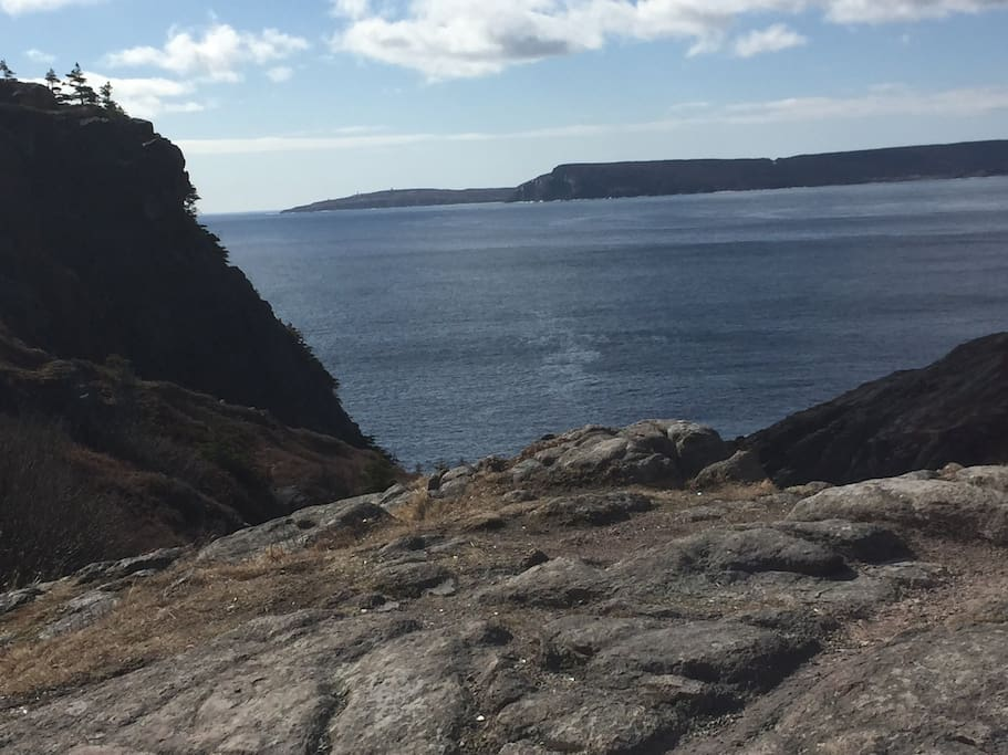 Cuckolds cove. View to Cape  Spear