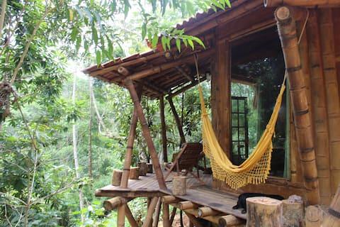 The Nature Guide - Bangalô Eternidade