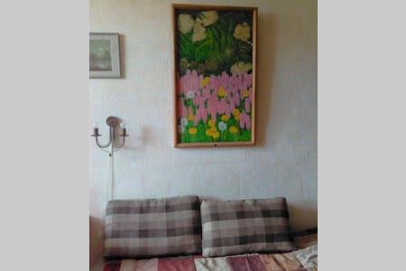 Уютная комната в самом центре - Apartment
