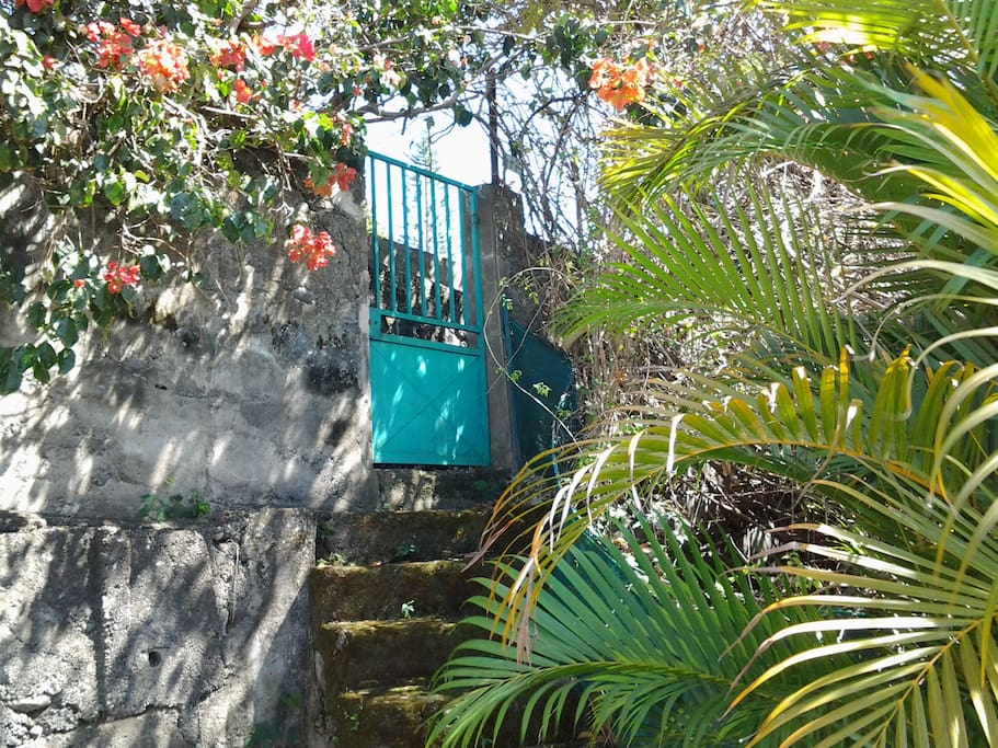 Petite maison 45 m2 dans mini jardin maisons louer saint denis saint denis r union - Petit jardin en pot saint denis ...