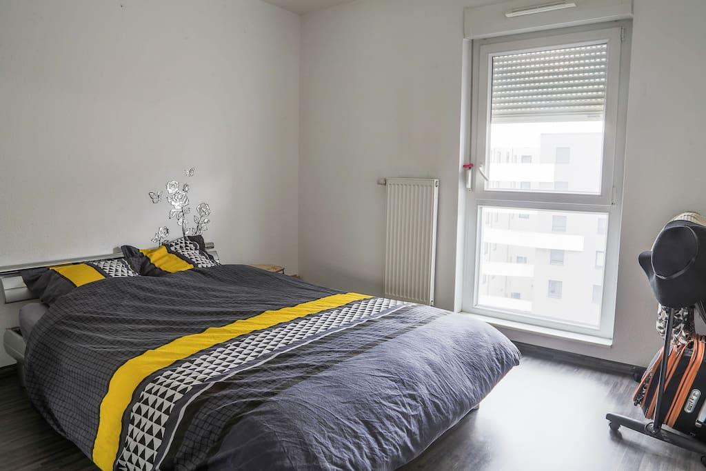 appartement d 39 artiste tout confort apartments for rent in strasbourg grand est france. Black Bedroom Furniture Sets. Home Design Ideas