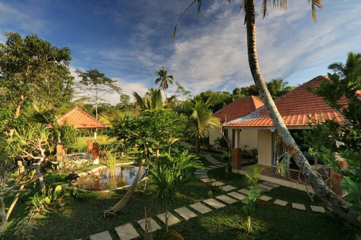 Beautiful Rice Field Guests House Village Stay II