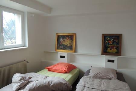 Les daims d'Ostheim - Ostheim - House