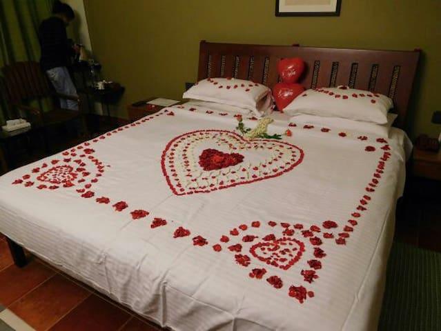 Honeymoon pleasure home and travel