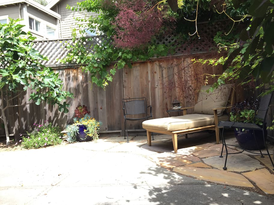 Relax and read a book in the backyard