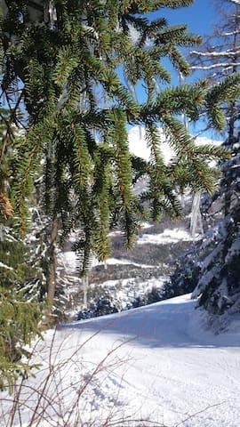 Station de ski du Grand Puy