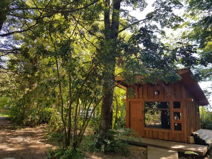 Cabaña cerca de Huilo Huilo, entorno natural