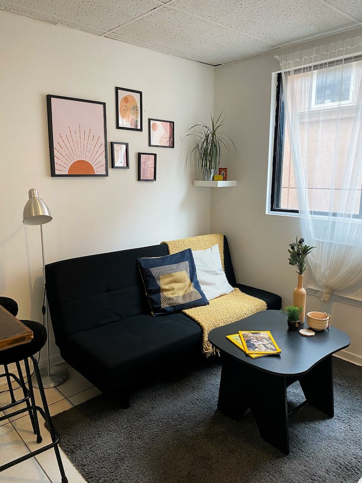 Entire 1 Bedroom Apartment. Toronto