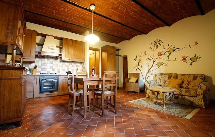 Typical Chianti Tuscany Apartment, with pool