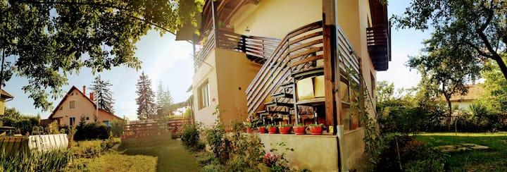 An Ordinary House