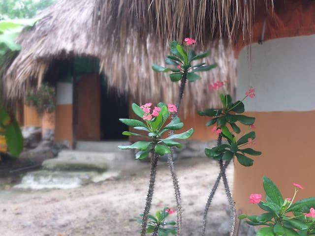 La casa del río Mendihuaca Tayrona hut #1
