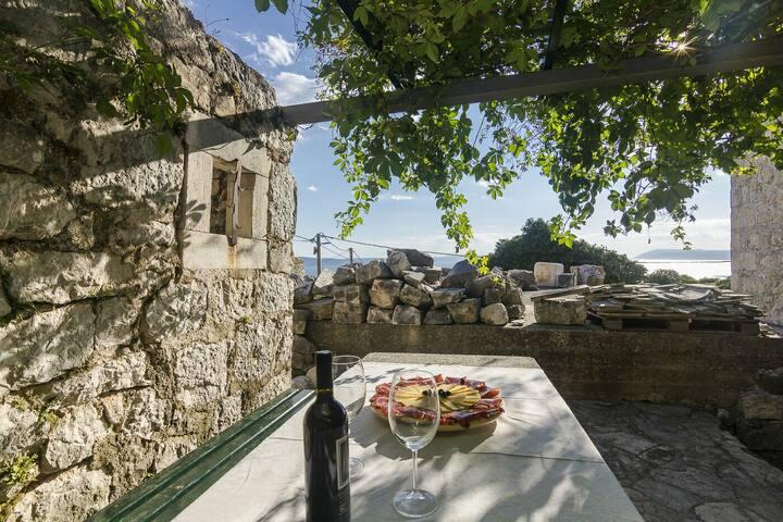 Old Dalmatian House NINA
