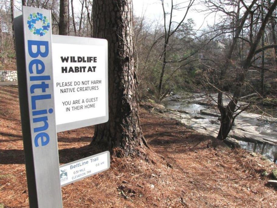 Northside Beltline Trail -  Tanyard Creek