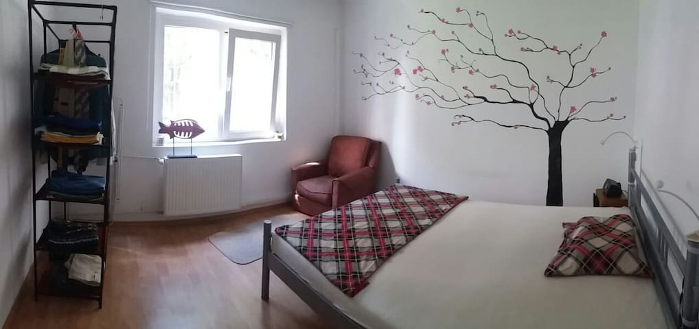 Clean Minimalist Bedroom - Oradea - Apartment