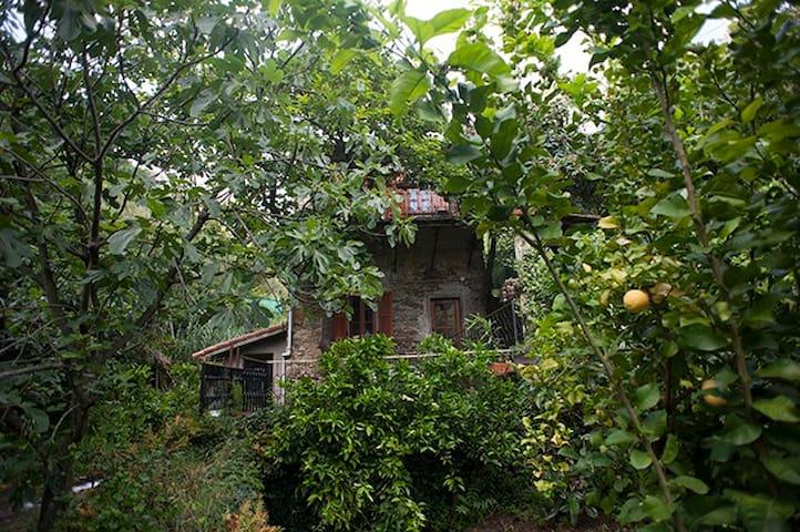 Antico rustico immerso nella natura vicino al mare - Riomaggiore - Casa