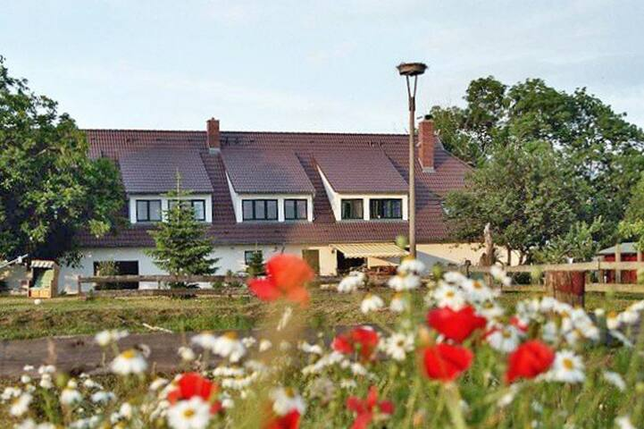 Ferien auf dem Ponyhof - Rappin - Casa