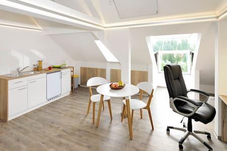 Neue Dachgeschosswohnung im Zentrum (R.302)