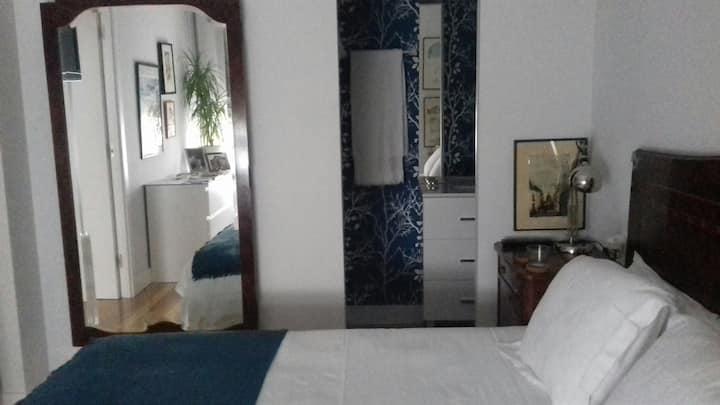 Céntrico. Habitación doble y baño privado. LBI-148
