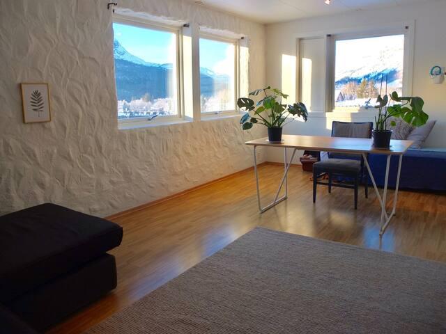 Apartment in beautiful Hemsedal