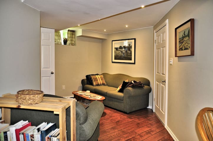 Lower level living/sitting area