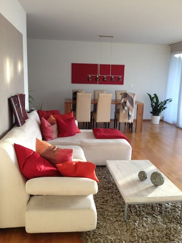 Cozy apartment -big balcony- close to trainstation - Wetzikon - Apartment